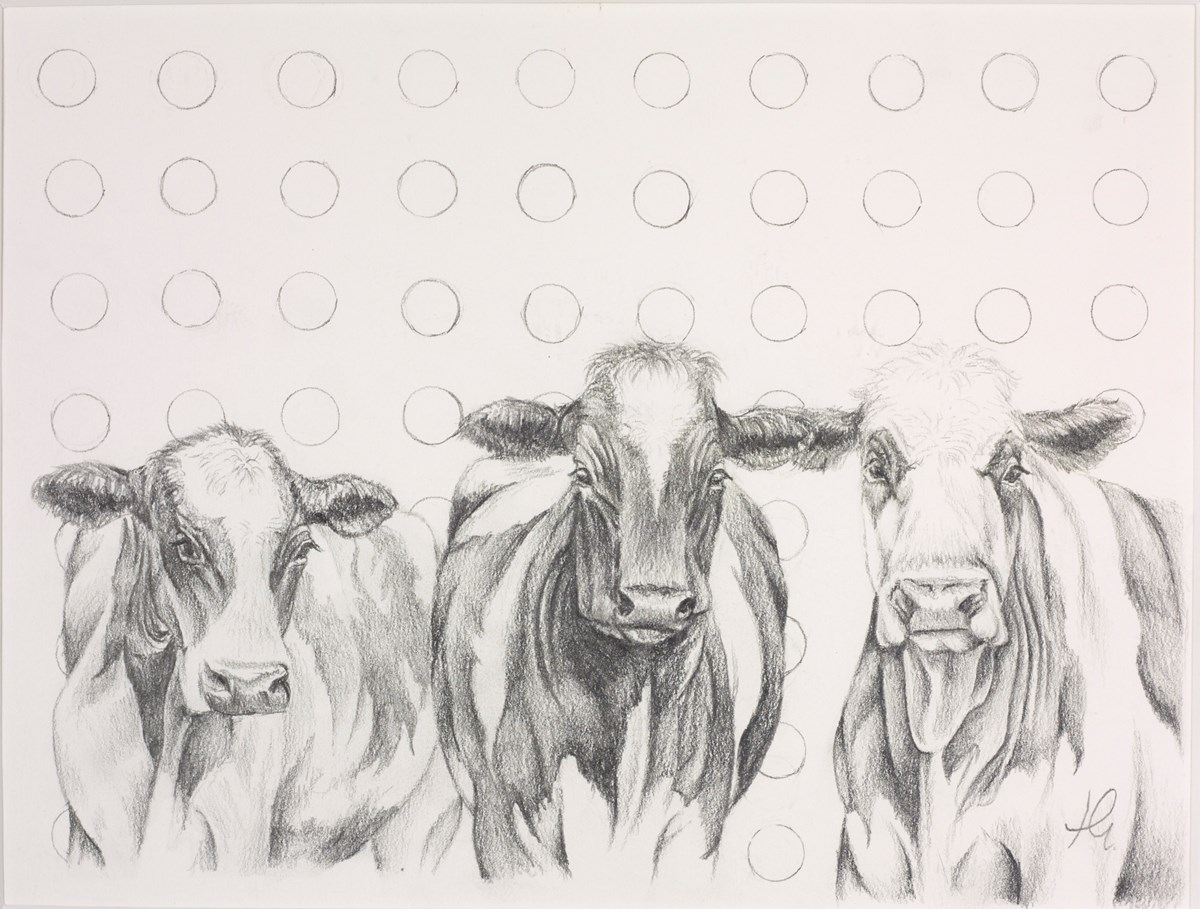 Damien's Herd Study Sketch by hayley goodhead -  sized 11x8 inches. Available from Whitewall Galleries